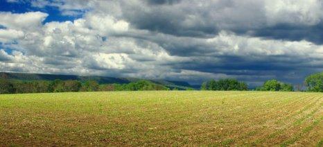 ΠΩΛΕΙΤΑΙ χωράφι στην περιοχή Γαλατάς Μεσολογγίου