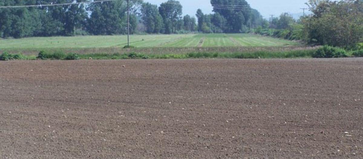 Πωλείται χωράφι στη Γουριά Μεσολογγίου